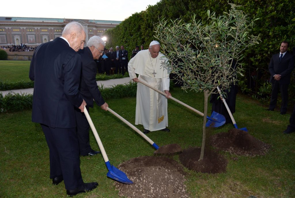 President Peres President Abbas and Pope Francis plant an olive tree